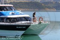 CanterburyAkaroa_Harbour_Nature_Cruises